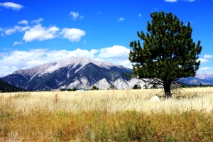 Colorado Moutain Landscape
